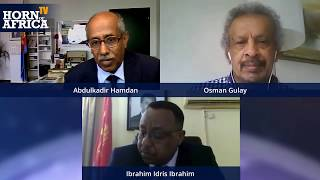 HoA TV -  Interview with Ibrahim Idris Ibrahim and Osman Gulay, July 4 2020.