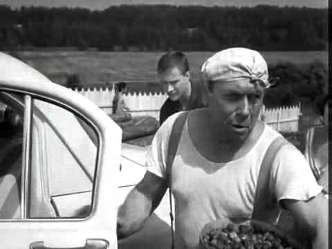 Я торгую клубнику выращенную своими руками фильм 72