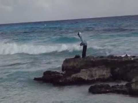 Fly Fishing Playacar Mexico From Shore 2011