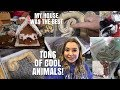 Taylor Reptile Expo Making Gingerbread Houses Vlogmas Day 9 mp3