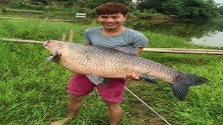Nuv Mag Ntses Loj Tiag Tiag | Giant Fishing