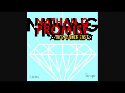 Nathan G. - The Promise Feat Alexander East (boogie Rapture Disco Dub Perspective) video