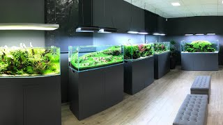 AMAZING AQUASCAPE TOUR at Green Aqua, Budapest