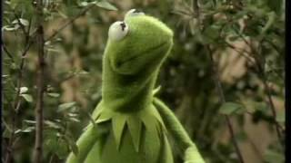 The Muppet Show: Kermit -