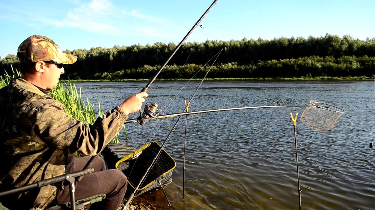 Ловля на фидер большой реке 2017 видео