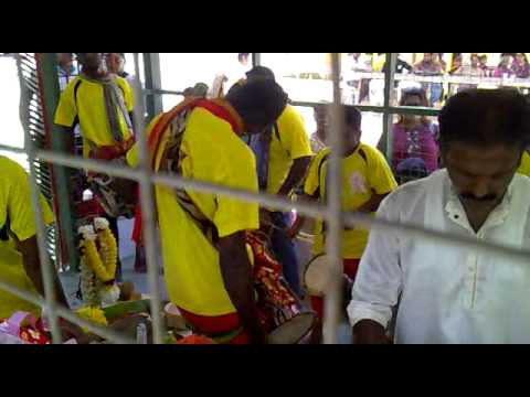 Sri Singgamuga Kaliamman Urumi Melam video