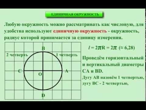 10 класс. Алгебра. Единичная окружность.