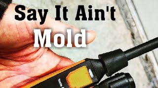 Mold Risk Potential w/Testo Smart Probes