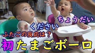 【男女双子】初めてのたまごボーロ!2人の反応は?mix twins the reaction that ate the first egg bolo?