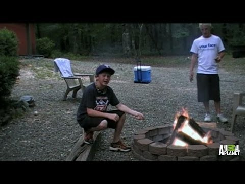 A S'mores How-to Video Turns into Potential Evidence | Finding Bigfoot