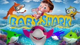 Baby Shark , The Wheels on the Bus , Johny Johny Yes Papa , Twinkle Twinkle Little Star , ABC Song