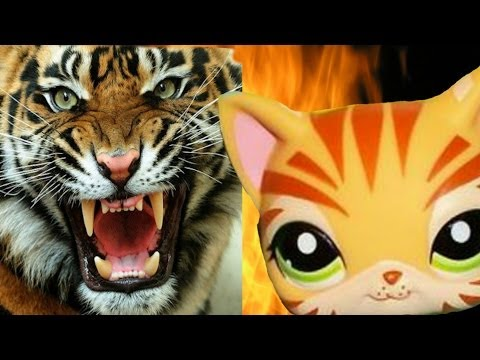 Lps Music Video: Roar By Katy Perry video