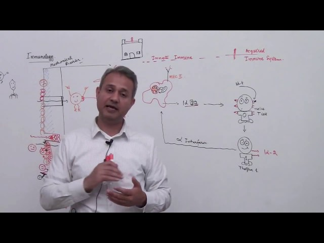 Immunology Lecture 1 Part 5