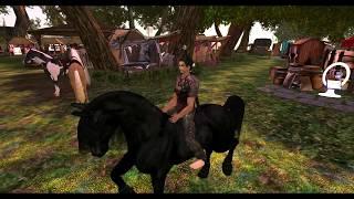 Never ride a talking Horse (Bento Horse)