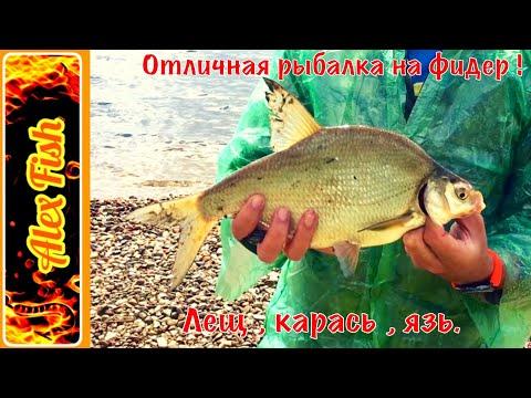 рыбалка на фидер лещ язь
