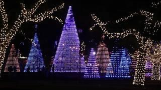 Gulfport Christmas lights preview at Jones Park