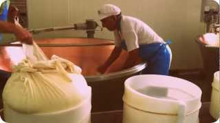 How Parmesan cheese in made - HD quality video of the production