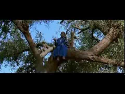 """Фильм Тони Гатлифа """"Latcho drom"""" (1993, Франция)"""