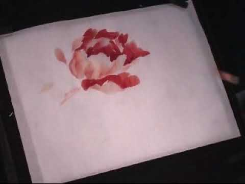 0 Hot red Peony   a Chinese Painting Tutorial
