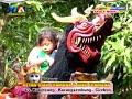 Download Lagu Burok Kaula Muda Live Kalimeang