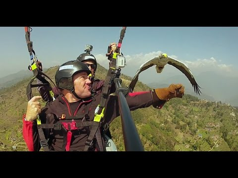 Amazing! Flying with an Egyptian Vulture - Deadly 60 - Series 3 - BBC