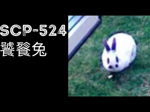 scp基金會 SCP-524 Walter the Omnivorous Rabbit 饕餮兔 (中文)