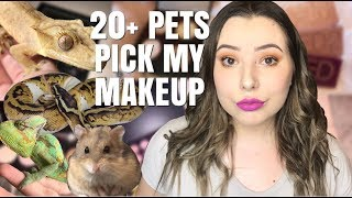 MY 20+ PETS PICK MY MAKEUP! (They Clearly Hate Me...)