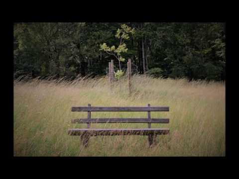 park bench (free lo-fi beat) #1
