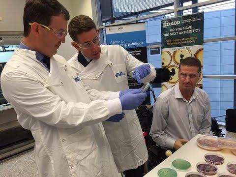 New antibiotics needed to fight drug-resistant bacteria, Queensland researchers warn