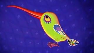 Tinga Tinga Tales Official Full Episodes   Why Hummingbird Hums   Cartoon For Children