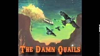 Download Lagu The Damn Quails   Fools Gold Gratis STAFABAND