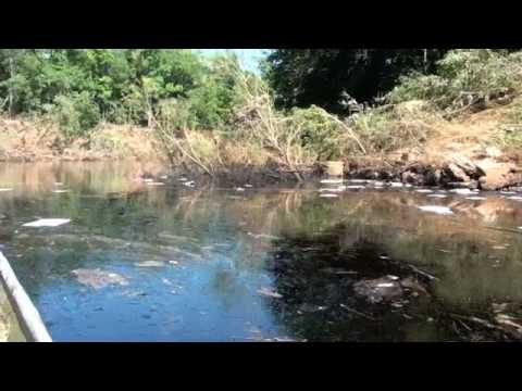 6-22-2010 Oil Spill Footage