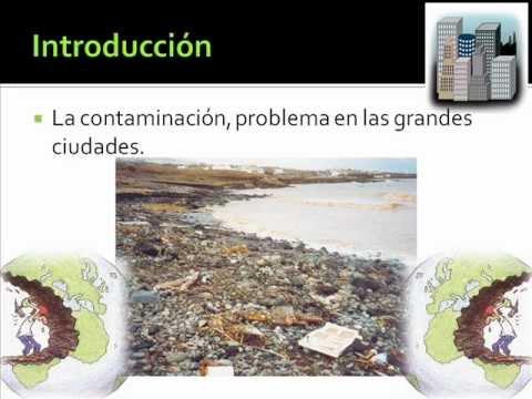 Creación de un cuaderno ecológico a partir de desechos de papel