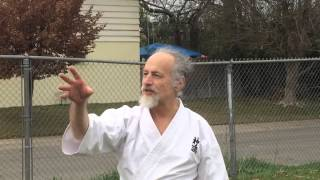 Koichi Barrish Sensei - Two Rivers Budo (2/15/14)