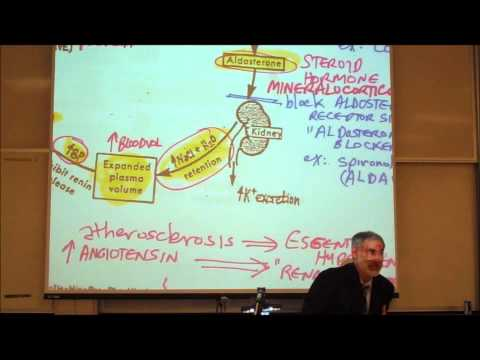 CARDIOVASCULAR DRUGS; ANTI HYPERTENSIVE DRUGS by Professor Fink thumbnail