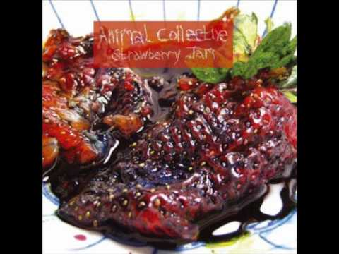 Animal Collective - For Reverend Green