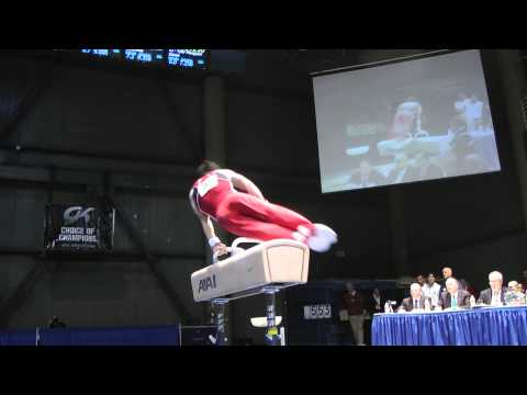 Glen Ishino - Pommel Horse - 2012 Winter Cup Finals - 1st