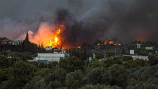 Waldbrände in Griechenland fordern zahlreiche Tote