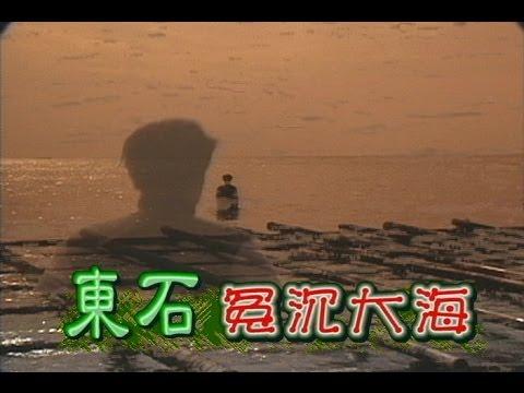台劇-台灣奇案-東石冤沉大海