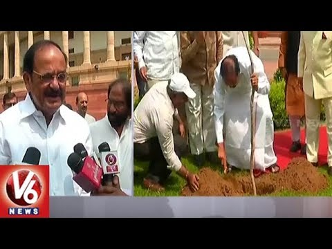 Venkaiah Naidu Plants Saplings To Mark His 1st Year As Vice President | V6 News