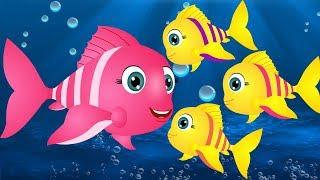 मछली जल की रानी है - Machli Jal ki Rani Hai Hindi Poem | Hindi Rhymes for Kids | Jo Jo Kids