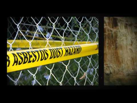 Asbestos Abatement Mold Removal Atlanta