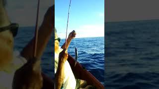 Let's go fishing Angaur style