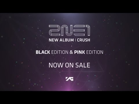 2ne1-new Album crush video