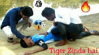 download lagu Tiger Zinda Hai  Kg Vines  Best Comedy gratis