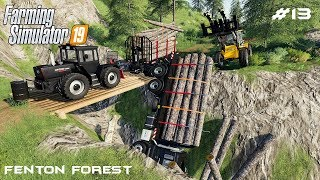 Cleaning accident | Forestry on Fenton Forest | Farming Simulator 19 | Episode 13