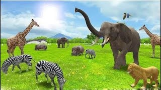 Baby Learn Animals With Real Animals 3D - Funny Cartoon Educational Children Games