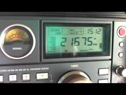 21675 kHz Radio Africa ( Pan American Broadcasting ) via WRMI