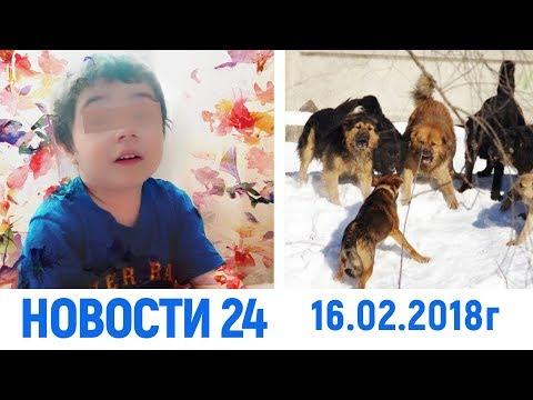 Новости Дагестан за 16.02.2018 год