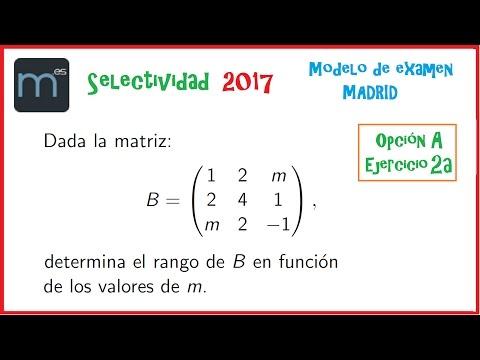 Rango de una matriz y parámetros - Examen Modelo Ebau Evau Selectividad Madrid 2017